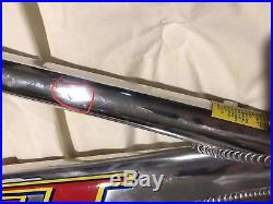 GT BMX Speed Series Box Stay XL Team Model 1998 Rare Beautiful. All Original