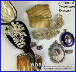 RARE Antique Georgian Seed Pearl 4.5 x 3 Brooch, Hair Pin, Original Box Muse